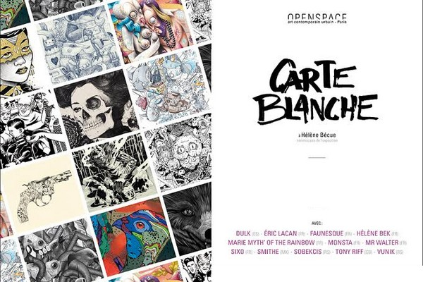 exposition-a-la-galerie-openspace-carte-blanche-a-helene-becue