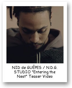 "NID de GUÊPES / N.D.G. STUDIO ""Entering the Nest"" Teaser Video"