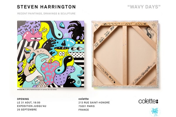 exhibition-wavy-days-by-steven-harrington-01