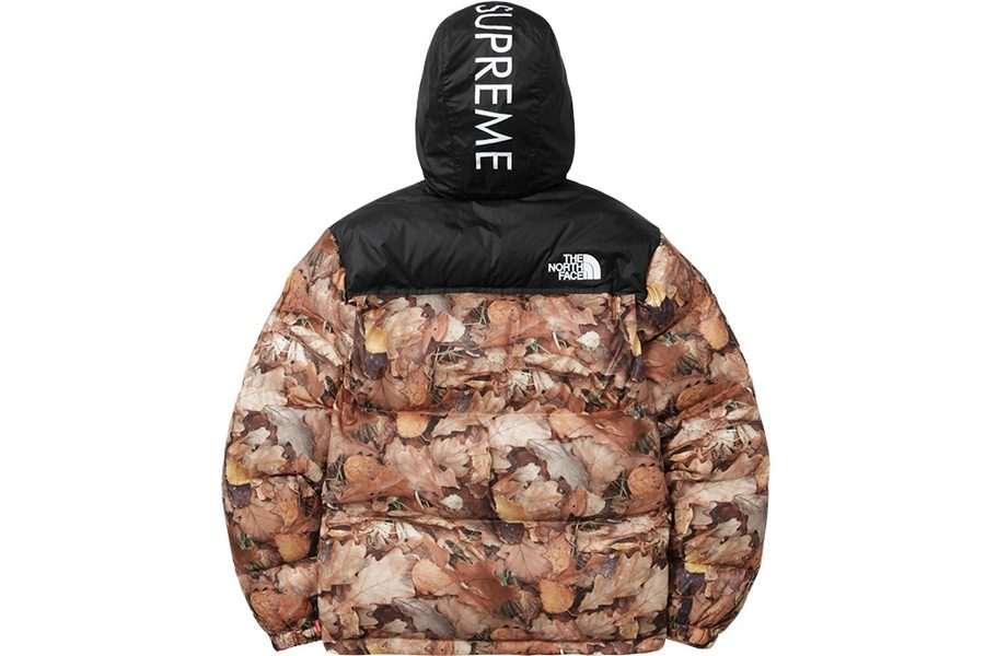 supreme-x-the-north-face-fall-winter-2016-collection-08