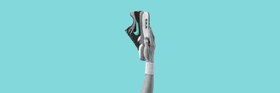 Nike Air Max 1 Atmos Elephant