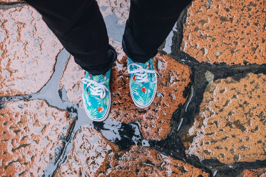 vans-ss17-palms-collection-05
