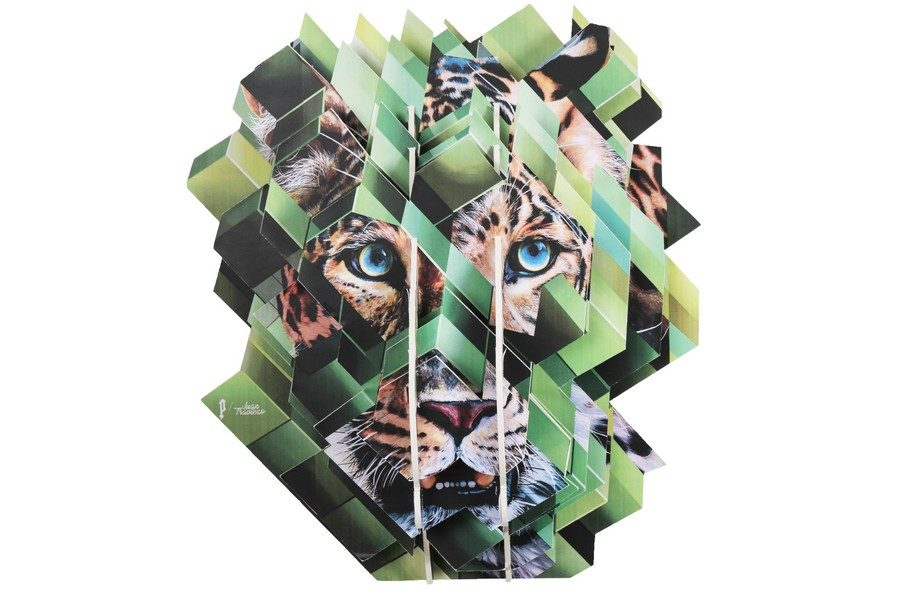 Perrier-Wild-x-Juan-Travieso-13