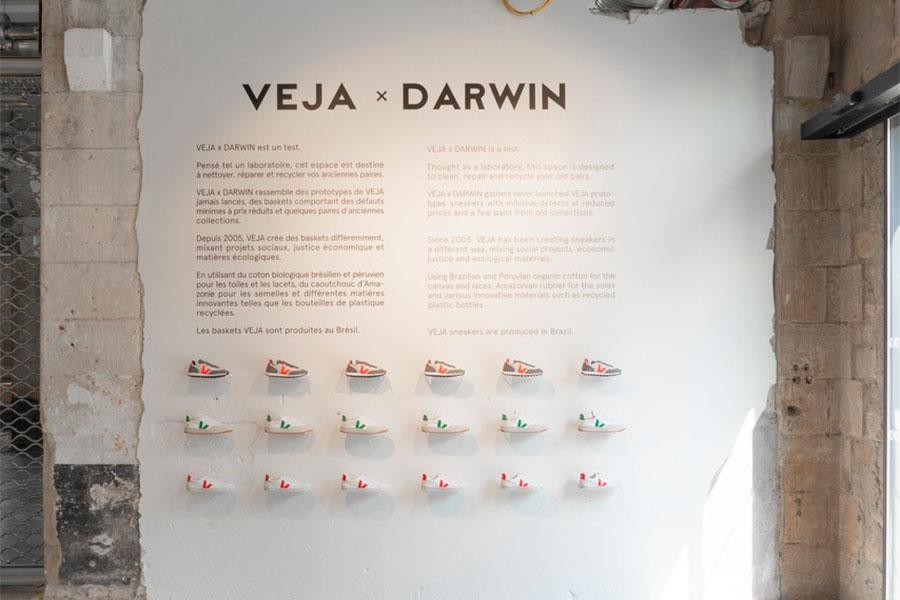 Veja x DARWIN