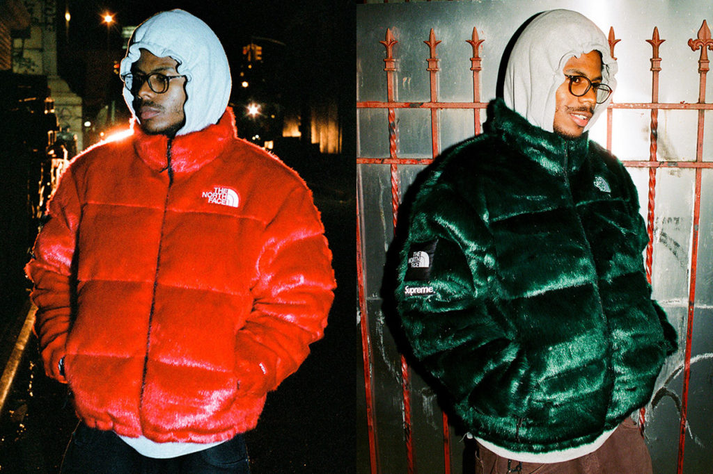 Supreme x The North Face Automne/Hiver 2020