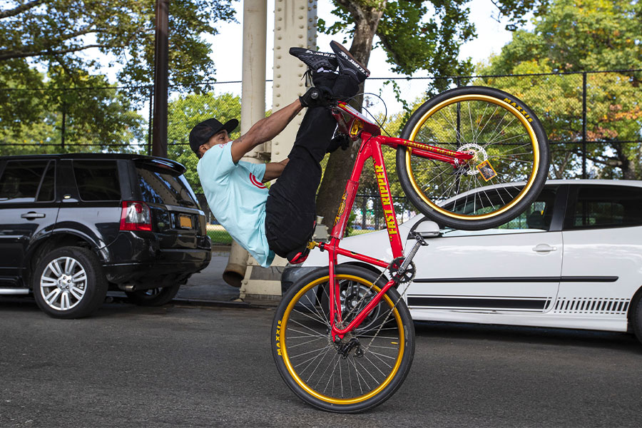 Vans x SE Bikes