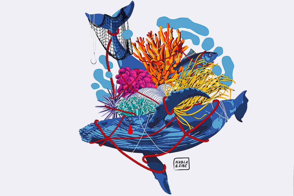 North Sails x Journée mondiale de l'océan